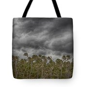 Windswept V3 Tote Bag
