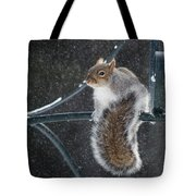 Windy Winter Day Tote Bag