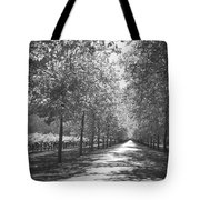 Wine Country Napa Black And White Tote Bag by Suzanne Gaff