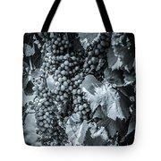 Wine Grapes Bw Tote Bag