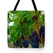 Wine Grapes On The Vine Tote Bag