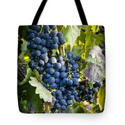 Wine Grapes Tote Bag by Tetyana Kokhanets