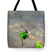 Winged Critter Tote Bag