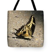 Winged Delight Tote Bag