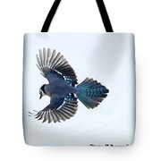 Wings Of A Blue Jay Tote Bag