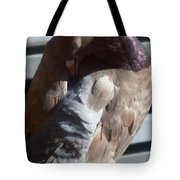 wings of a Dove Tote Bag