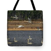 Wings Over Water 2 Tote Bag