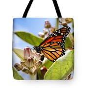 Wings Up Monarch Butterfly By Diana Sainz Tote Bag