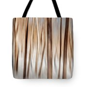 Winter Abstract Tote Bag by Bill Wakeley
