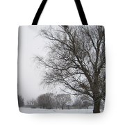 Winter Afternoon 4  2013 Tote Bag