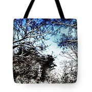 Winter Along The Bronx River Tote Bag