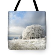Winter Tote Bag by Anne Gilbert