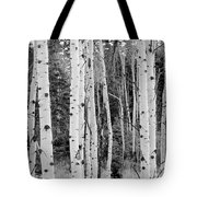 Winter Approaches Tote Bag