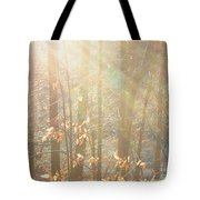 Winter Arbor Light Tote Bag