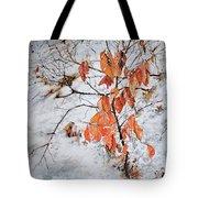Winter Ash Tote Bag