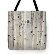 Winter Aspen Tree Forest Portrait Tote Bag