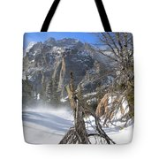 Winter At Loch Vale Tote Bag