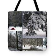 Winter At Petrifying Springs Park Tote Bag