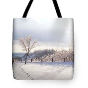 Winter At Scarborough Bluffs Tote Bag