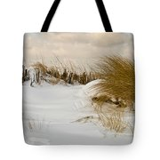 Winter At The Beach 3 Tote Bag