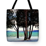 Winter At The Dunes Tote Bag