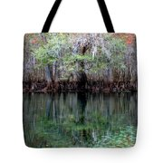 Winter At The Springs 1 Tote Bag