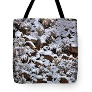Winter Bald Eagle Tote Bag