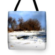 Winter Beauty Tote Bag