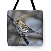 Winter Beauty.. Tote Bag