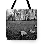 Winter Beckons Tote Bag by Benjamin Yeager