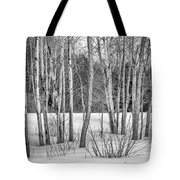 Winter Birches Tote Bag