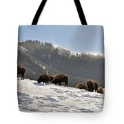 Winter Bison Herd In Yellowstone Tote Bag