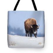 Winter Bison Tote Bag