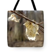 Winter Bleached Leaves Tote Bag