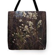 Winter Blossoms Tote Bag