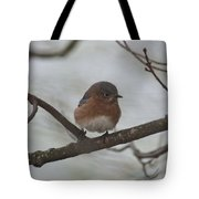 Winter Blue Bird 1 Tote Bag