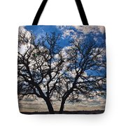 Winter Blue Skys Tote Bag