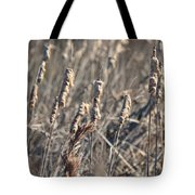 Winter Cattail Abstract Tote Bag