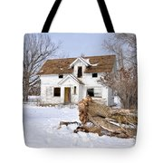 Winter Cleanup Tote Bag