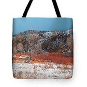 Winter Colors 2 Tote Bag
