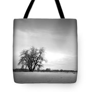 Winter Cottonwood 2 Tote Bag