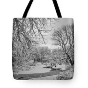 Winter Creek In Black And White Tote Bag
