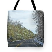 Winter Cruise Tote Bag