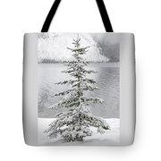 Winter Decor Tote Bag