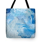 Winter Tote Bag by Denise Mazzocco