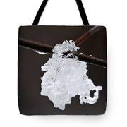 Winter Detail Tote Bag by Elena Elisseeva
