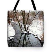 Winter Ditch Tote Bag