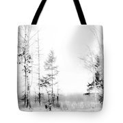 Winter Drawing Tote Bag by Jenny Rainbow