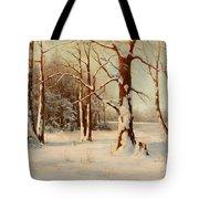 Winter Dream Tote Bag