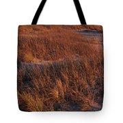 Winter Dunes Iv Tote Bag